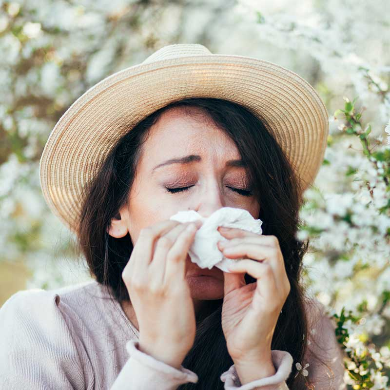 Allergy Treatments & Solutions